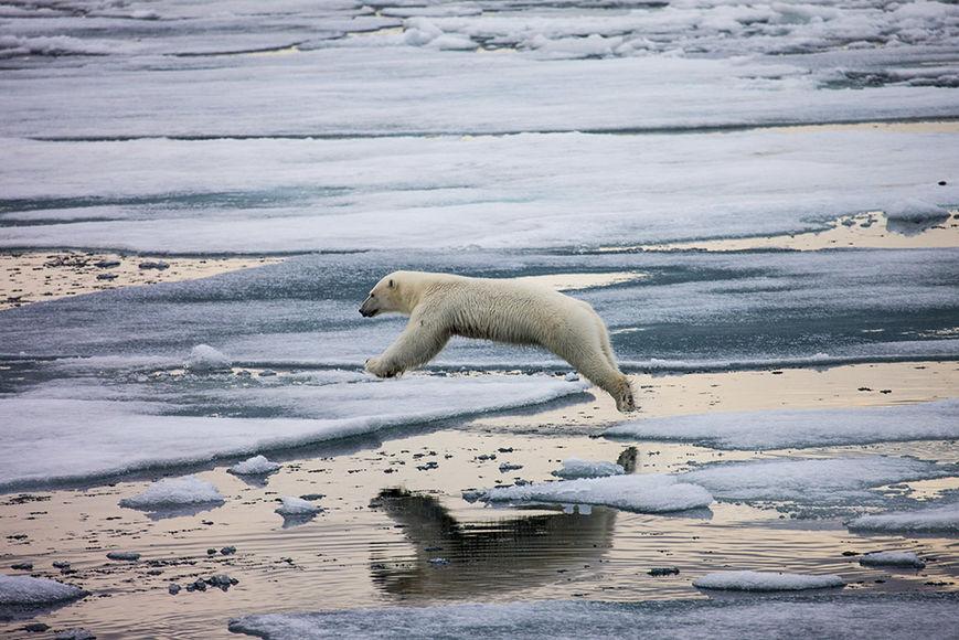 Глава Минэнерго предложил сделать Арктику территорией опережающего развития