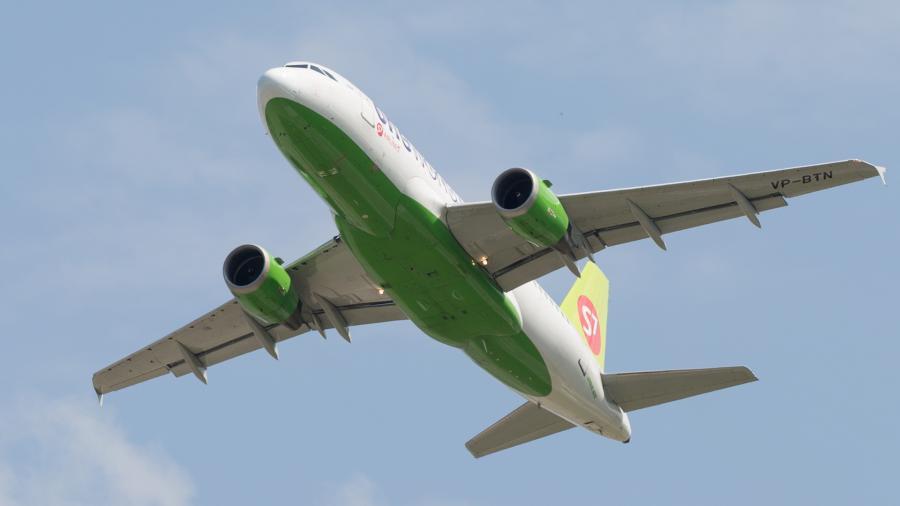 Совладелица S7 погибла в авиакатастрофе в ФРГ