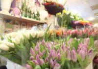 Роспотребнадзор дал рекомендации по выбору цветов к 8 Марта