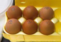 Пшено, яйцо, топливо и валидол: Росстат назвал наиболее подорожавшие товары