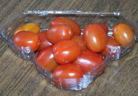 Сын Романа Абрамовича передумал выращивать помидоры на Дальнем Востоке