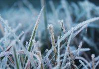 Росгидромет предупредил россиян о «морозце» в мае