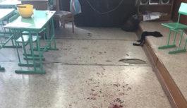 В Саратовской области школьник с топором напал на шестиклассницу