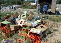 Роспотребнадзор запретит уничтожать пригодные к еде продукты