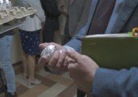 В Орле депутатам горсовета раздали яйца храбрости. Не помогло
