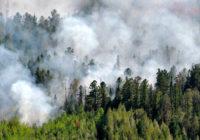 Дым от сибирских пожаров дошел до Москвы