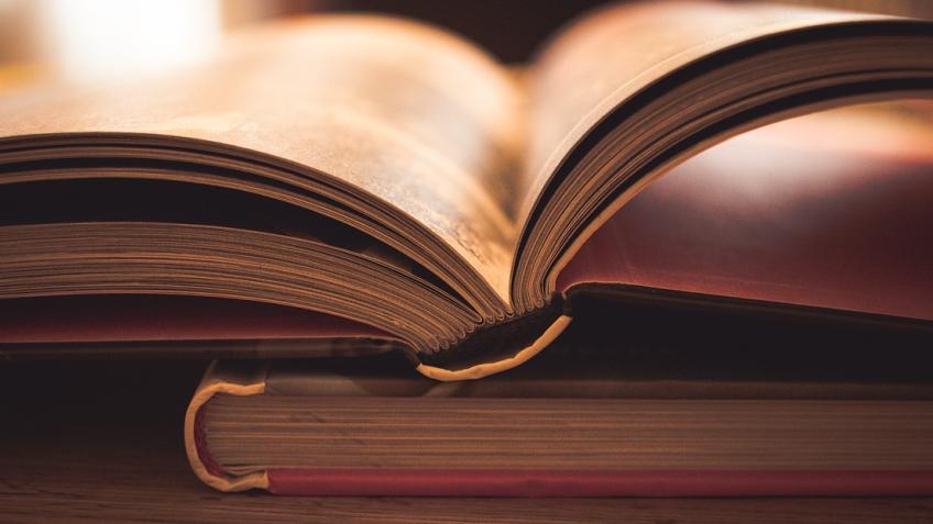 Депутат-коммунист предложил заменить в школах Солженицына на Библию