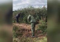 В Башкирии мать пропавшего малыша призналась в его убийстве