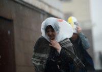 В России захотели запретить пластиковые пакеты