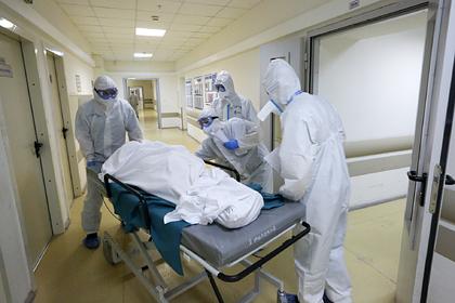 У границ России зафиксирован третий случай смерти от бубонной чумы