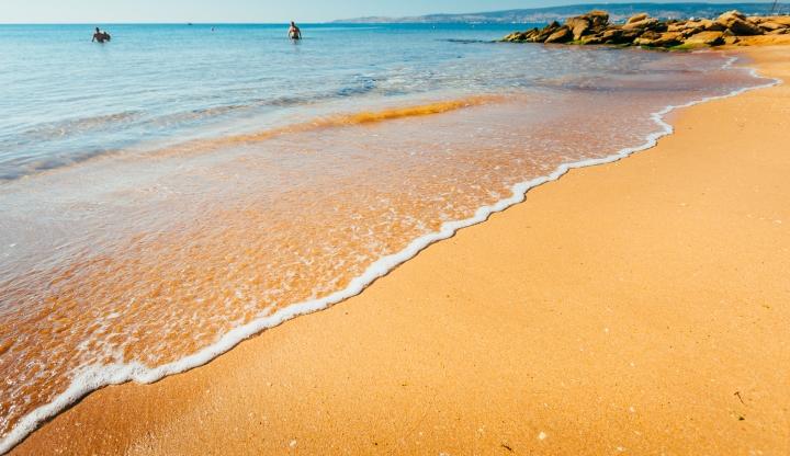 Россиян предупредили об опасности заражения через песок на пляжах