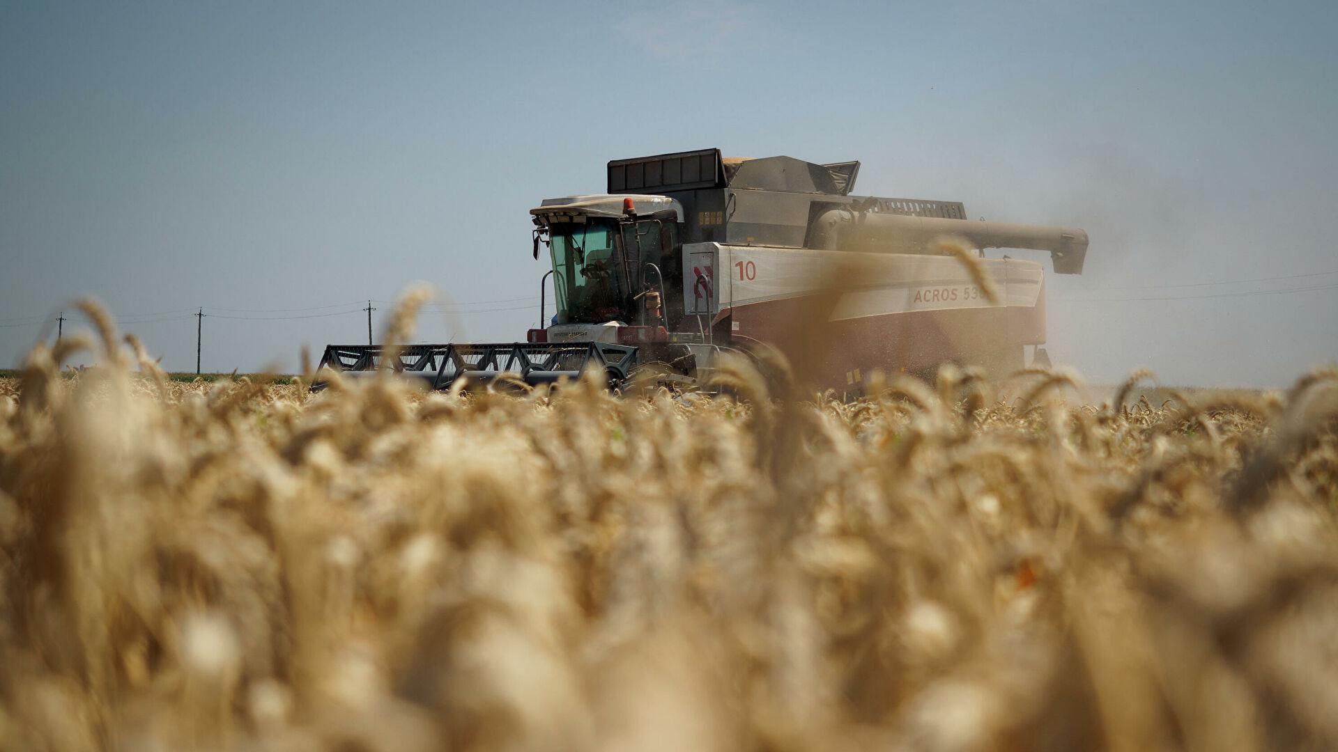 Украина запретила российскую пшеницу и бумагу