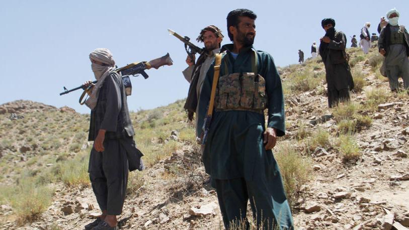 Эксперт рассказал о пророссийских группировках в Афганистане